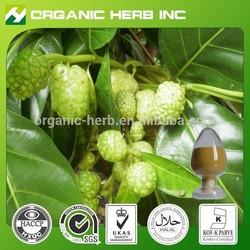 Natural noni powder price | noni prices | Noni Fruit Extract