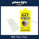 Hot Sale Algeria 2pk Disposable Paper Mouse Glue Trap With Strong Glue