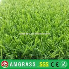 Monofilament carpet grass (AMT323-25D)