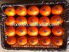 Cheap Orange Price,Egyptian Orange Exporters,Fresh Mandarin Orange