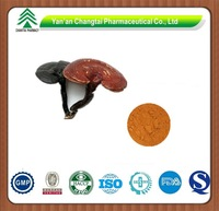 GMP factory supply best popular high quality Reishi Mushroom Extract