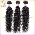 بيع مصنع 100% 6a الحقيقي غير المجهزة البرازيلي مجعد الشعر الطبيعي للنساء السود