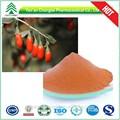 Uv / HPLC GMP vente 100% naturel poudre 40% 50% 60% pureté