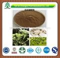 Gmp fabricación de alta calidad de raíz de angélica P.E. en polvo