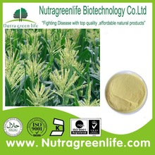 factory supply best price corn pollen