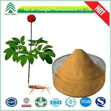 Supplying GMP Certificated natural Radix Notoginseng Extract powder