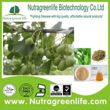 factory supply best price ginkgo biloba extract