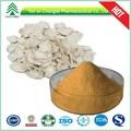 Gmp 100% hplc natural de alta calidad de raíz de angélica p. E.