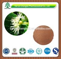 GMP factory supply best popular high quality Tilia Vulgaris flower Extract powder