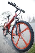 Flash, Selfdesign two wheel electric bike lithium battery