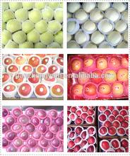 2014 New Crop Chinese Apple Fuji Apple Fresh Apple