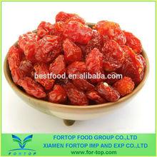 Bulk Sundried Cherry Tomato from Organic