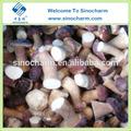 высокое качество замороженных белый гриб гриб
