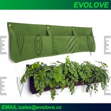 Green living wall systems and vertical garden