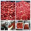 price of strawberry frozen