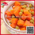 alimentos canne tipos de corte de legumes com alta qualidade