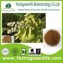 factory supply Tripterygium wilfordii Hook. f.