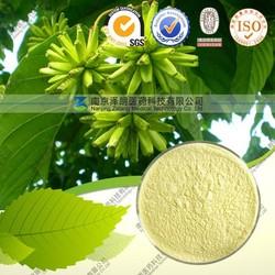 Factory Direct Supply 100% Natural Camptotheca acuminata Decne Extract --Camptothecine