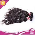 oem الطبيعية بيع الشعر الطبيعي في الهند