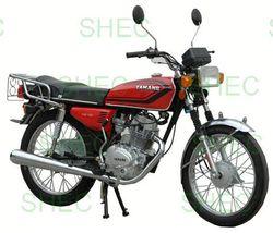 Motorcycle steering lock motorcycle