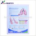 3d herz-chart, medizinische werbegeschenke
