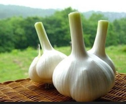 2015 Chinese Nice white garlic fresh natural garlic (MDG03996)