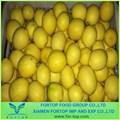 chinês de limão fresco de frutas cítricas