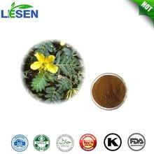 Plant extract Tribulus Terrestris Extract 5:1 10:1