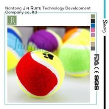 new pet dog product / cute pet toy/pet tennis ball