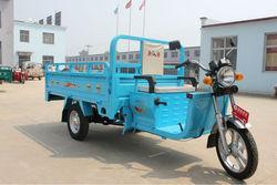 bajaj electric three wheeler for cargo
