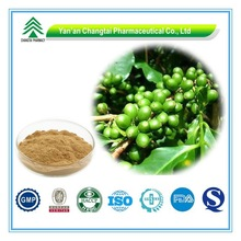 GMP Certificate Popular Herbal green coffee bean extract capsules