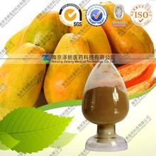 Health Care Product 100% Natural Papaya powder concentrate