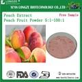 100% natural de la fruta del melocotón concentrado de jugo en polvo extracto