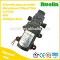 moteur électrique 12v pompe à eau