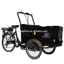 Front loading cargo bike electric trike