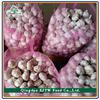 Fresh Red Garlic 5.0CM, Normal White Garlic 10Kg Carton, Super White Garlic For Export