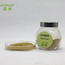 100% High Quality seaweed Kelp Extract