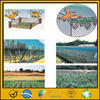ISO9001 certificated bird capture nets