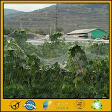 ISO9001 certificated bird catch net