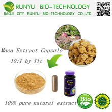 supplier Pure natural organic Peru maca extract capsule 5:1. 10:1. 20:1 Improve the quality of sperm to promote sex