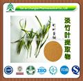 gmp fonte da fábrica de venda quente da alta qualidade de folhas de bambu pó