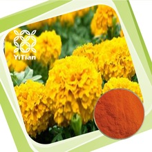 100% Natural Marigold Flower Extract Lutein And Zeaxanthin
