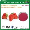 100 % pure naturel de fraise en poudre de jus de fruits avec un échantillon gratuit
