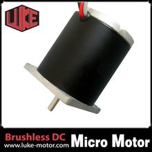 Electric Car Motor/24V DC Motor