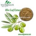 De alta qualidade extrato de oliva antioxidante hydroxytyrosol