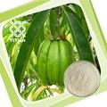 100% Natural de Garcinia Cambogia extracto de la fruta