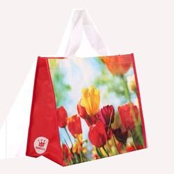 wholesale non woven shopping bag folded