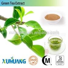 2015 Hot Sale Natural green tea extract,green tea extract powder,green tea powder
