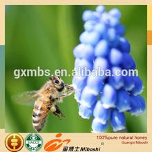 professional manufacturer export natural honey sale europe