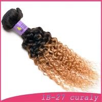 "guaranteed Brazilian hair jerry curly free wig catalogs 30""30""30"""